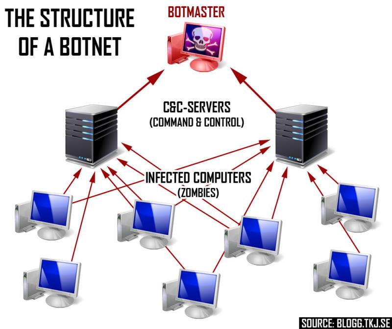 Botnet Structure