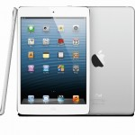 The iPad mini. Yay? Or nay?